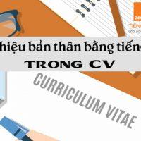 Gioi-thieu-ban-than-bang-tieng-anh-trong-cv-qua-personal-statement