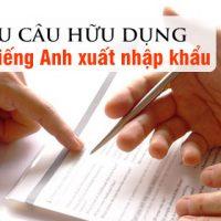 Mau-cau-huu-dung-tring-tieng-anh-xuat-nhap-khau-p5