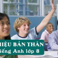 Bai-gioi-thieu-ban-than-bang-tieng-anh-lop-8-day-du